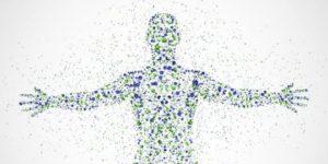 Ayuno y Microbiota