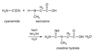 ¿Cómo se fabrica la creatina?