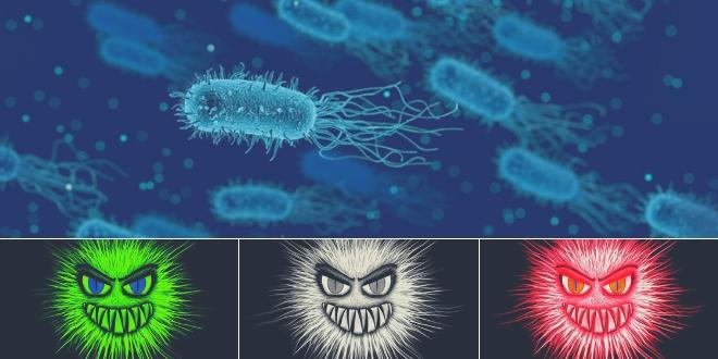 probióticos para la salud intestinal
