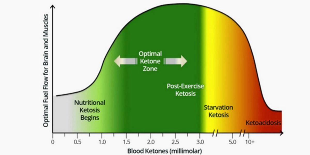 Representación gráfica de las concentraciones de cetonas en la sangre