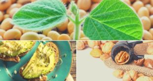 Alimentos Biotina