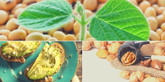 ¿Cómo incluir alimentos con Biotina en tu dieta?
