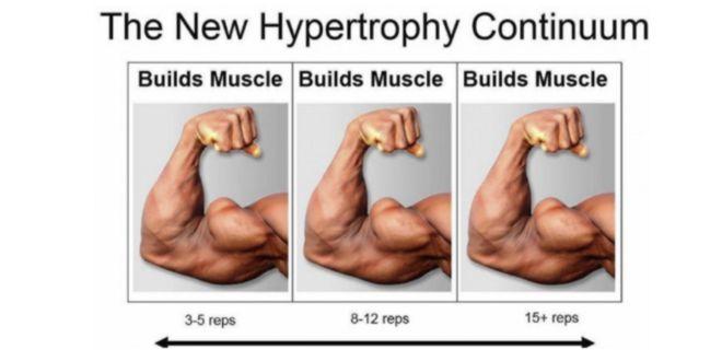 Modelo de Hipertrofia Continua