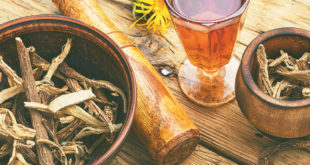 Beneficios del Harpagofito para la salud