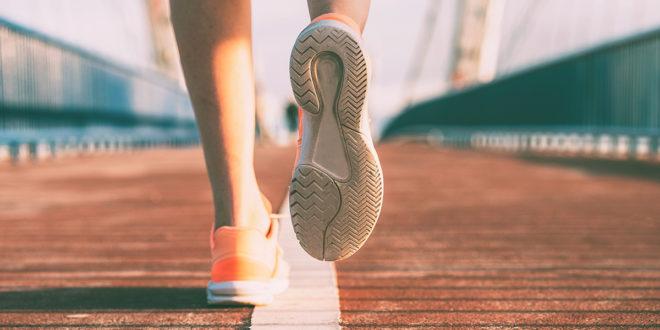 10 Beneficios de Cordyceps que te interesan