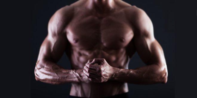Ácido Araquidónico – ¿Más Masa Muscular y Fuerza?