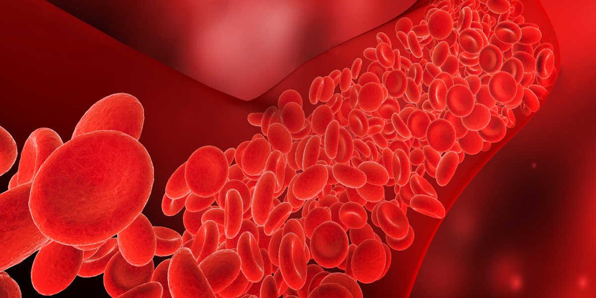 ¿Qué beneficios tiene la vitamina K para el corazón?