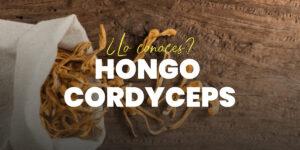 Hongo Cordyceps