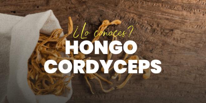 Hongo Cordyceps: Qué es y para qué sirve