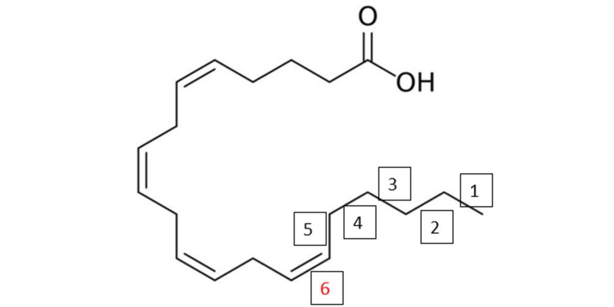 Estructura molecular ácido araquidónico