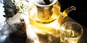 ¿Cómo tomar Té Verde?