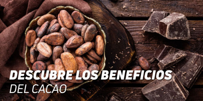 ¡Descubre los Beneficios del Cacao!