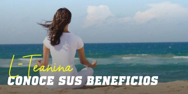 L-Teanina: Descubre el aminoácido para combatir el estrés
