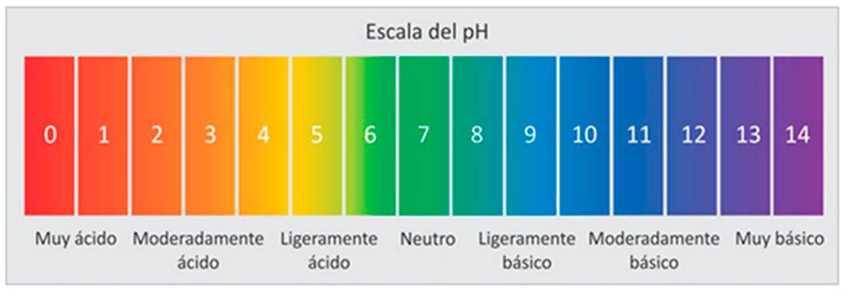 Escala del medio ácido-base