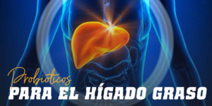 Probióticos para el Hígado Graso