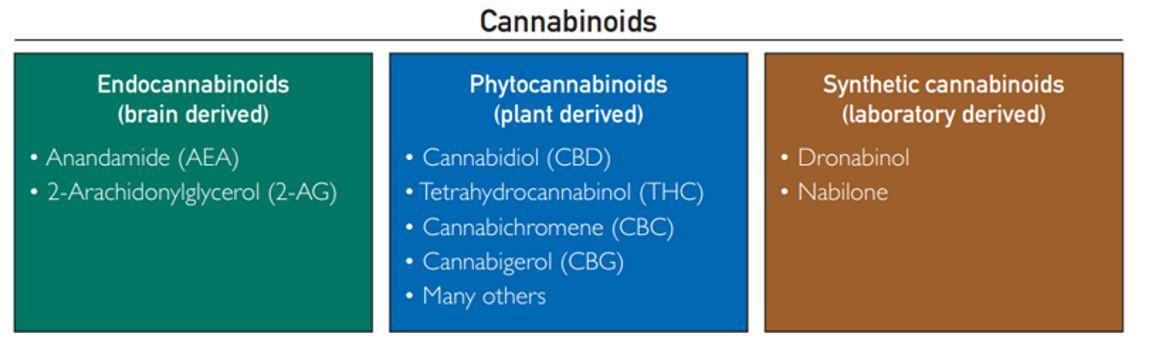 Clasificación de los cannabinoides