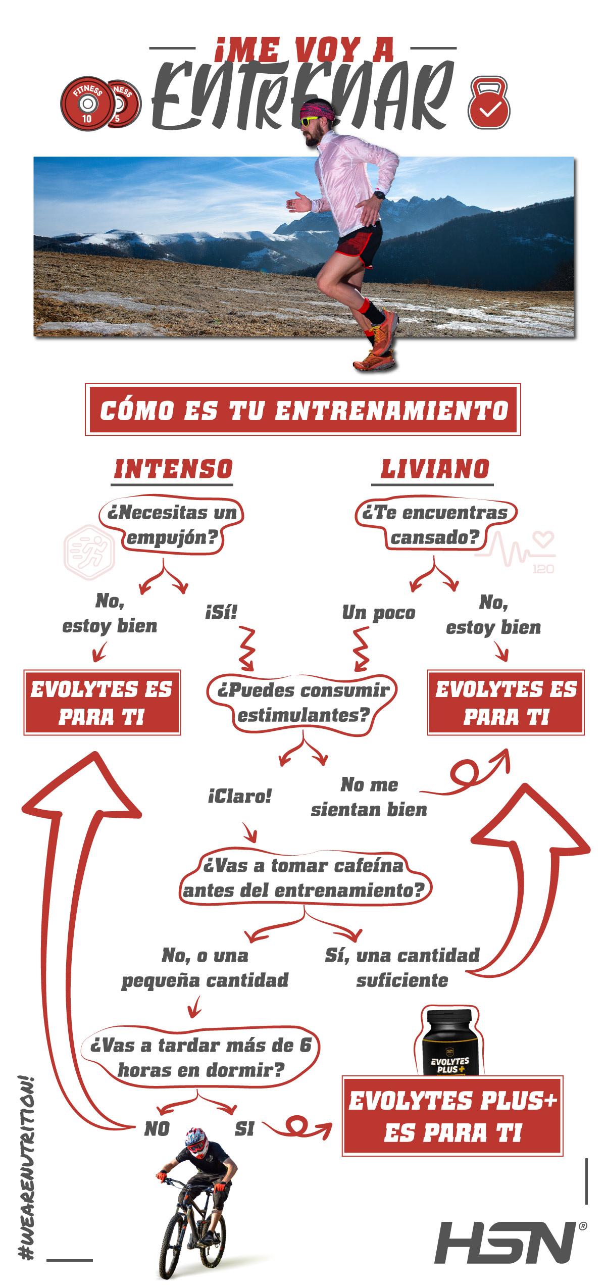 Flow Chart Evolytes