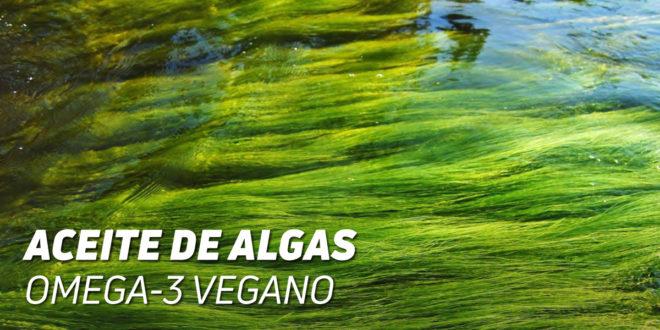 Aceite de Algas: Omega 3 Vegano