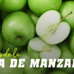 Fibra de manzana