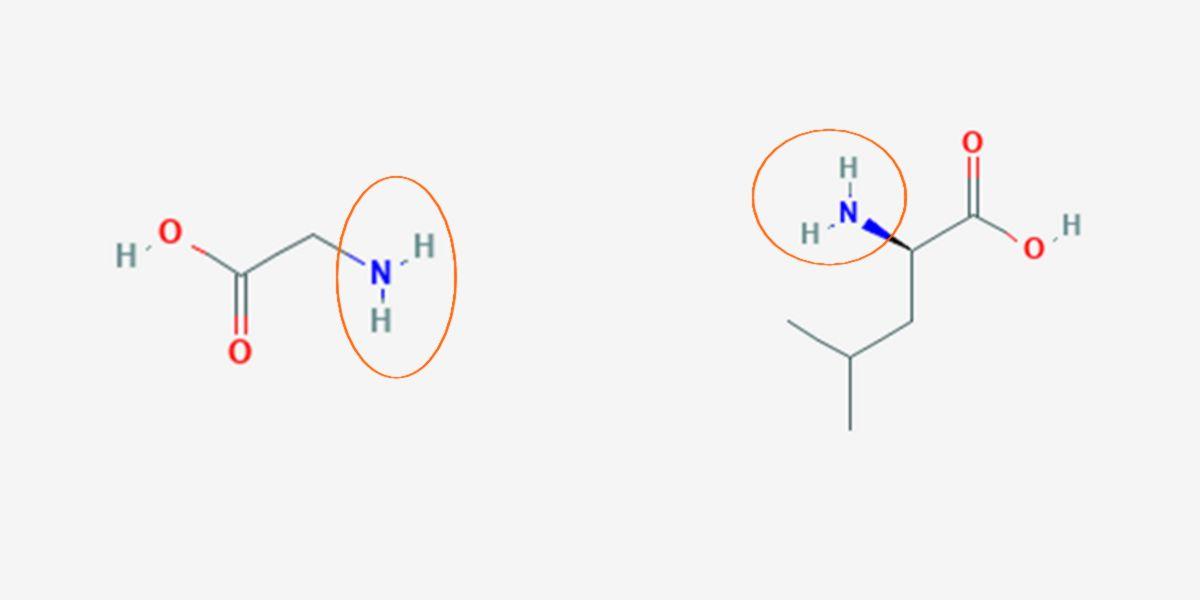 Comparación moléculas
