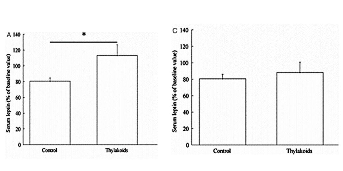 consumo de tilacoides