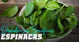 Espinacas y sus beneficios