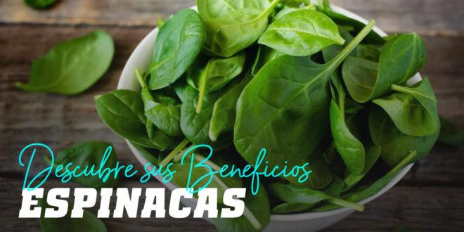 Espinacas: Descubre todos Sus Beneficios