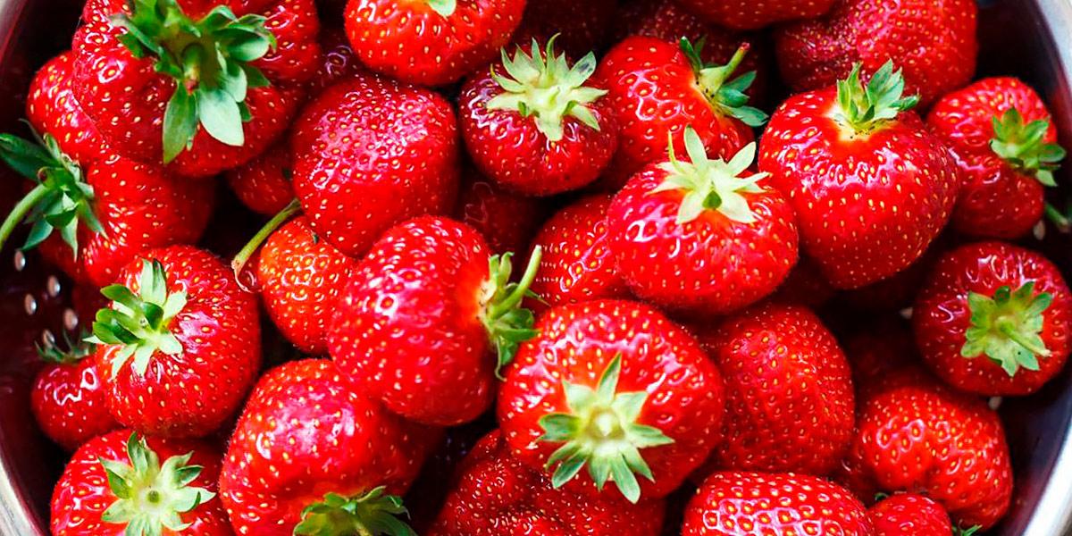 Fresas como antioxidantes