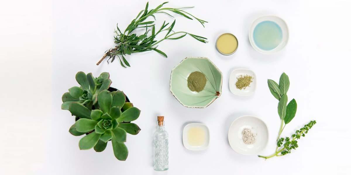 Ingredientes naturales para cosméticos