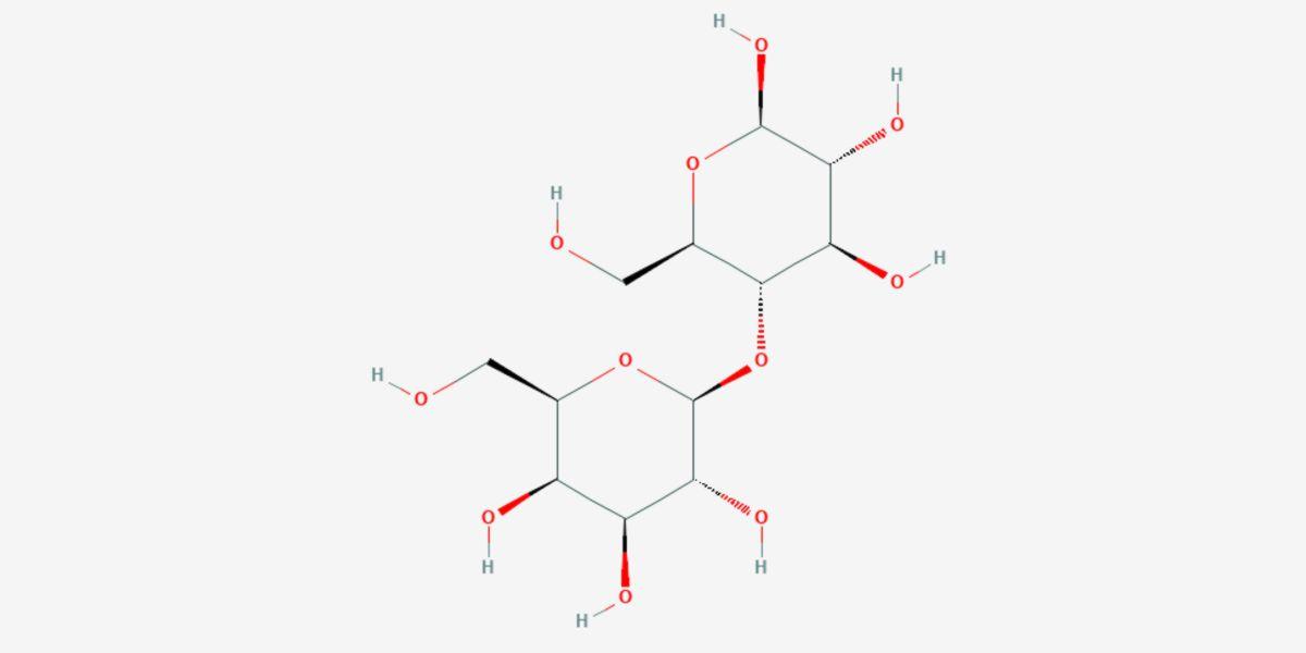 Estructura molecular lactosa