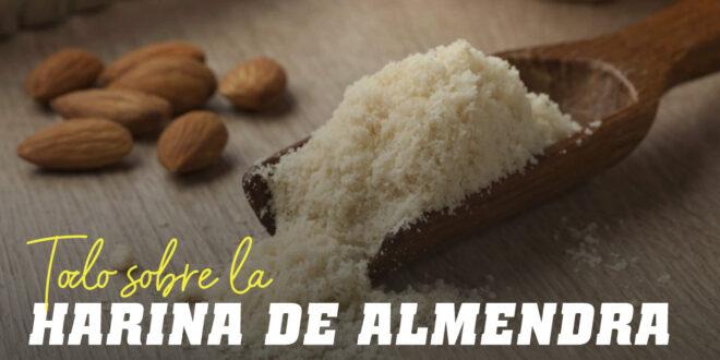 Harina de Almendras: Te contamos lo Que Debes Saber y Algunas Recetas