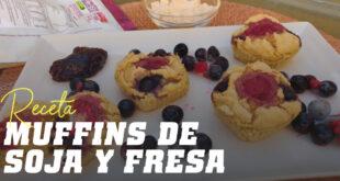 Muffins de Proteína de Soja
