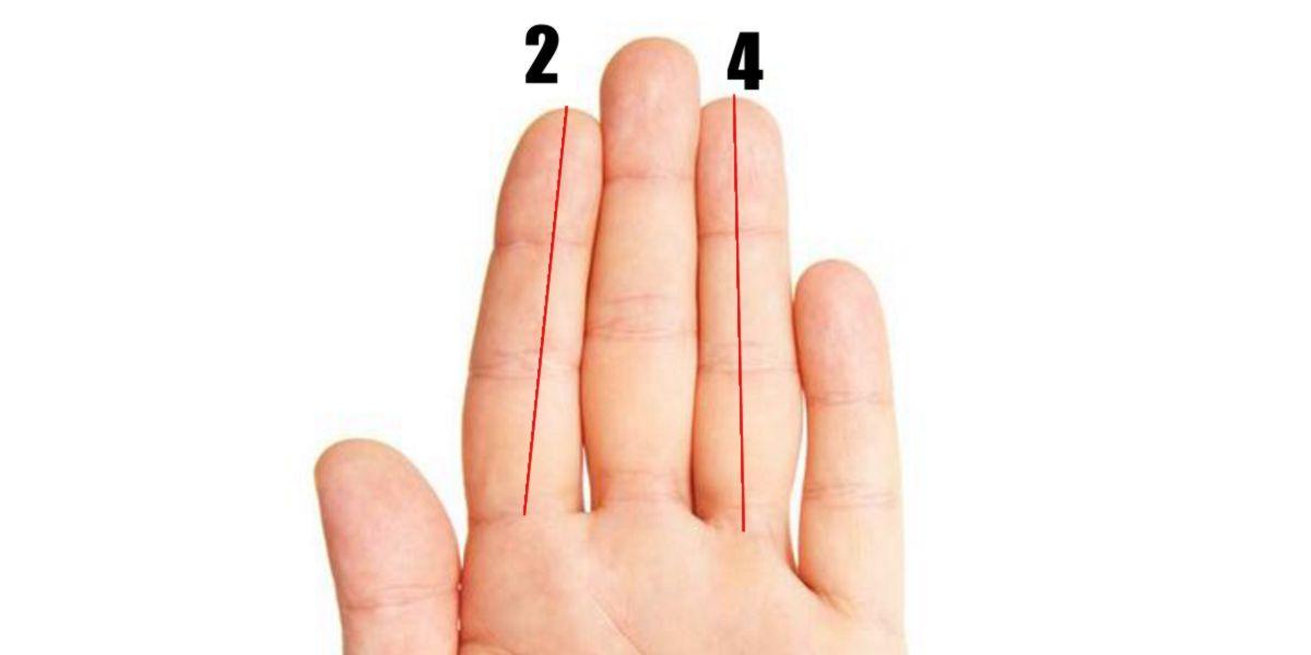 Representación medición dedos
