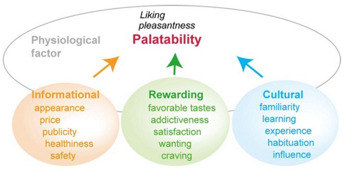 Factores que condicionan la palatabilidad y disfrute de un alimento