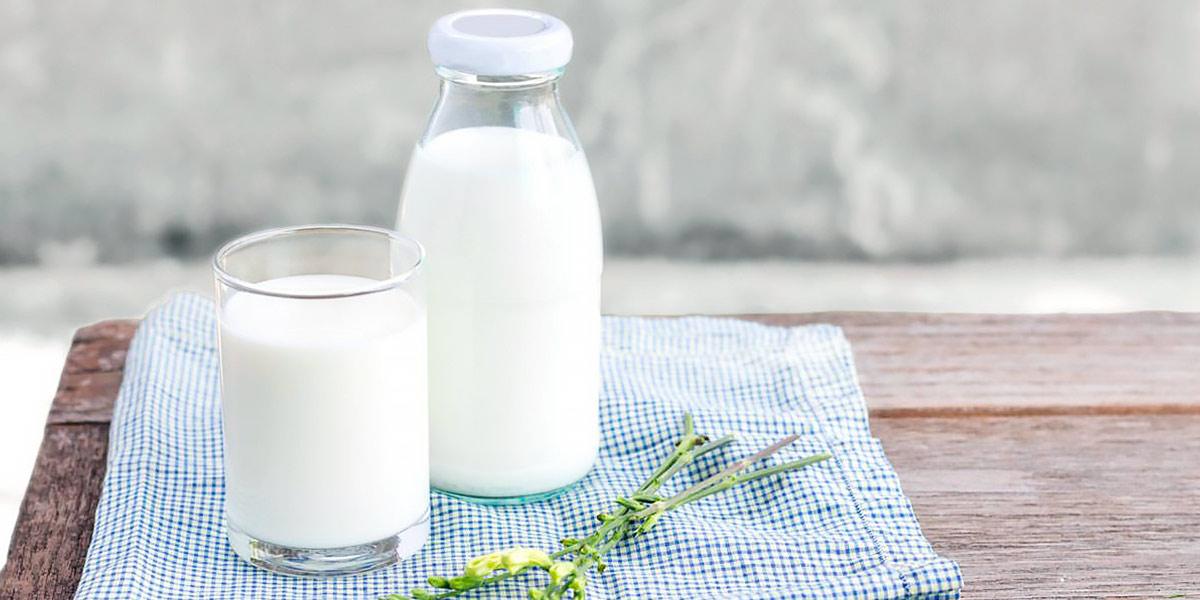 qué es la leche