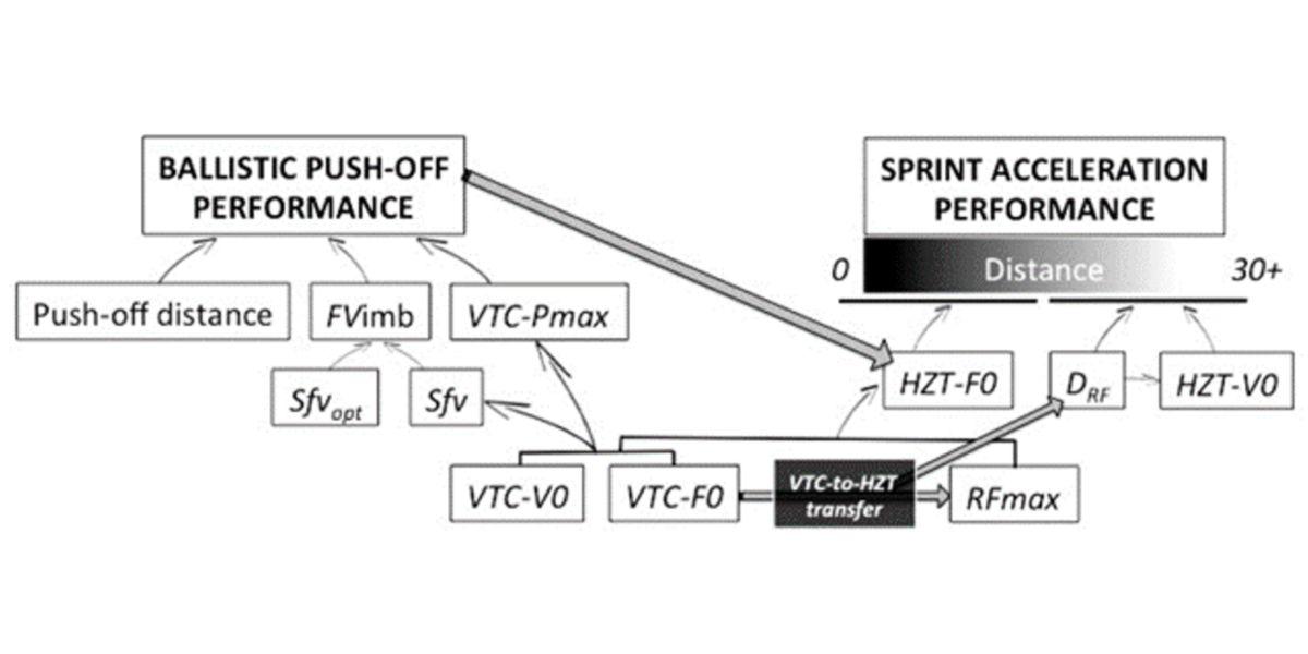 Perfiles de potencia-fuerza-velocidad