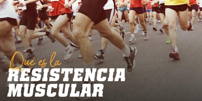 Todo lo que debes saber sobre la Resistencia Muscular