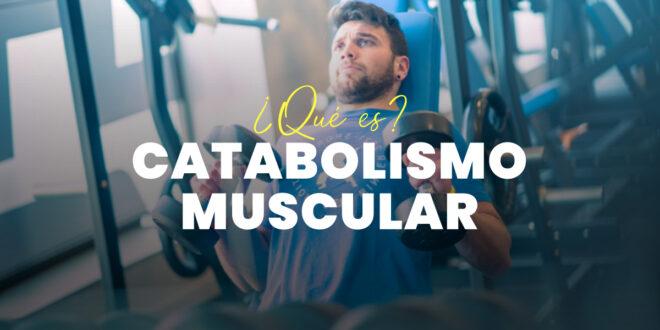 Catabolismo Muscular: Qué es, Por qué Sucede y Cómo Evitarlo