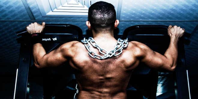 músculo anabólico
