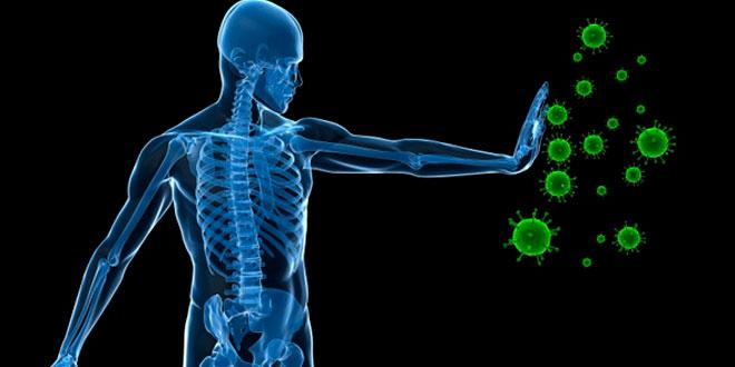 A importância da glutationa no organismo
