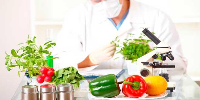 Tecnologia alimentar
