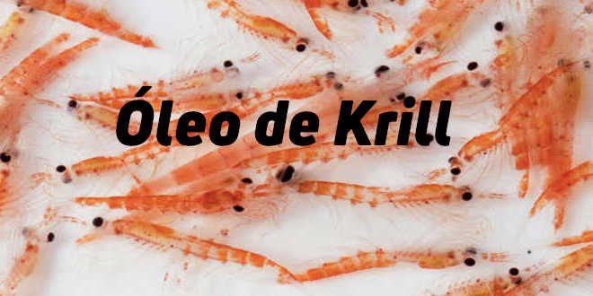 Óleo de Krill – Propriedades e Benefícios
