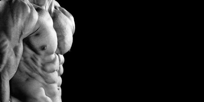 Zinco e testosterona