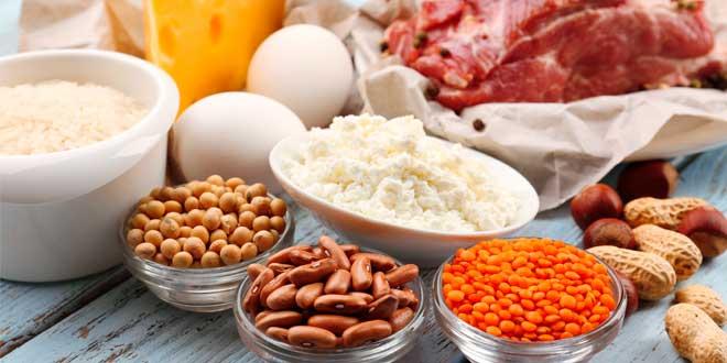 varias proteinas