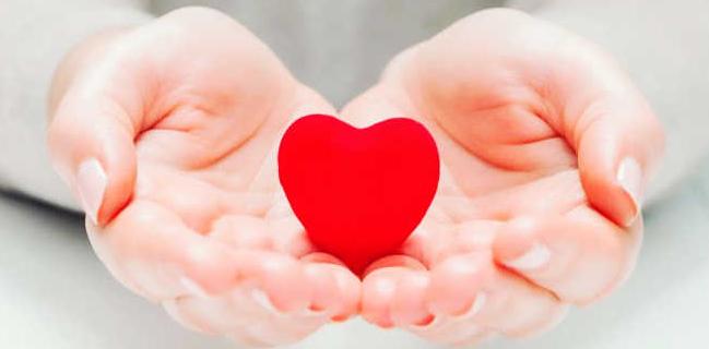 coração cultivo