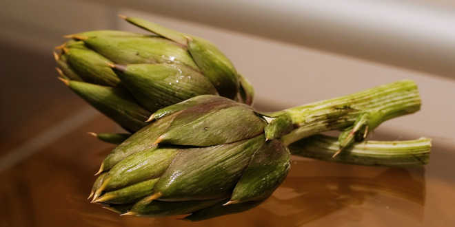 alcachofra produto saudável