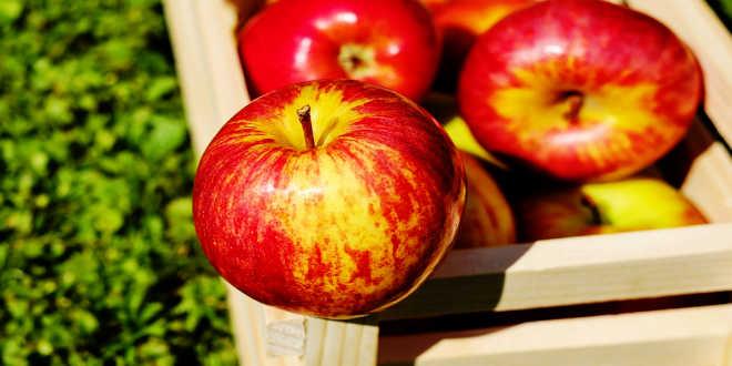 maçã alimento depurativo