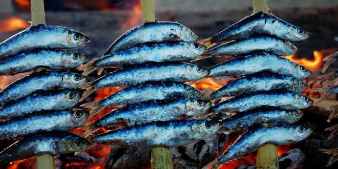 peixe azul comer depois natal