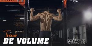 Treino volume mes 6