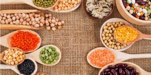 top fontes de proteínas vegetais